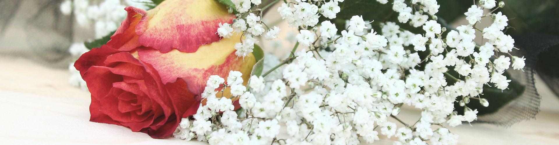 Nahaufnahme von Blumenschmuck