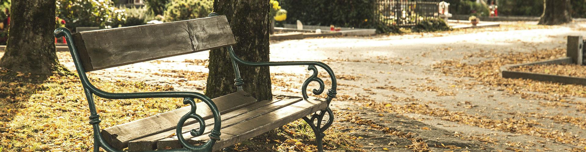Eine Bank steht auf einem Friedhof, überall liegt Herbstlaub