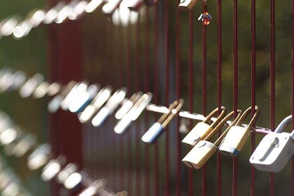 Schlösser an einem Zaun