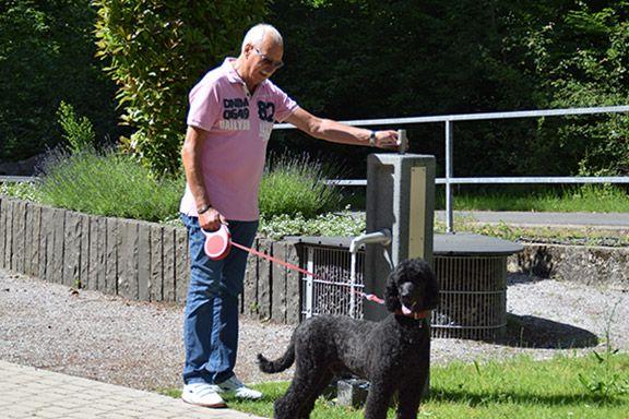 Ein Angehöriger besucht mit einem Hund ein Grab