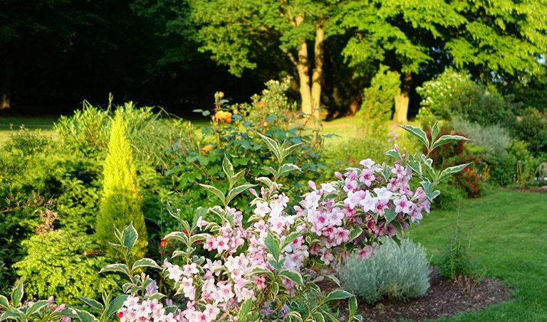 Blumengräber auf dem Friedhof Dachsenhausen
